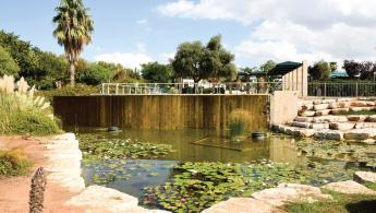 Kfar Shalem Park