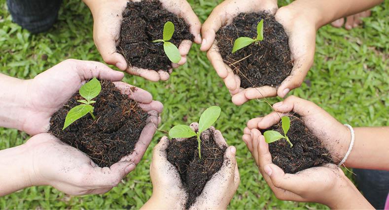 קידום חקלאות עירונית, ייצור מזון בר קיימא ובניית קהילה
